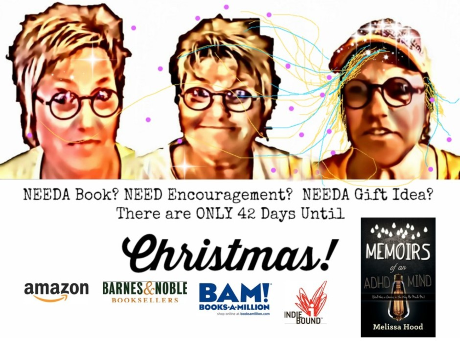 Needa Gift Idea? Only 42 Days Until Christmas! Grab Your Copy of ...